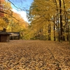 【ニューヨーク州でお出かけ】隠れた紅葉スポットDurand Eastman Park