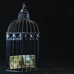 バイナリーオプションの詐欺業者と優良業者を見分けるポイントとは?