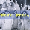 【共感】鳥井弘文さんの「群れずに群れたい」という言葉を考える。
