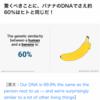 【からだ】足りないと感じたタンパク質。バナナを食べよー❣️
