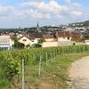【フランス】シャンパン業者の立ち並ぶ街~ちょこっと覗きに行こう♪~
