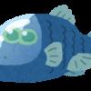 謎の深海生物「サルパ」を追え!!