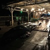 千葉県外房・和田漁港、深夜のクジラ解体作業を息子と見学
