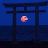 高確率で願いが叶う新しい『新月の願い』の書き方。