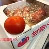 ドイツのフキンBLITZご紹介!&川助農園さんの甘いトマトにはまりました( ;∀;)