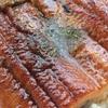 絶滅する?ウナギを愛し続けた日本人5000年の食歴史
