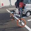 手作り電動バイクでお遍路24(計画変更)