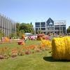 Floralies 国際的な花と緑の祭典