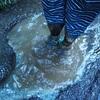 刈寄林道と坂沢線を探索。金剛の滝へのルートが絶たれた。