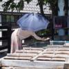 野沢温泉で温泉たまご作っちゃいました