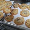 ココナッツオイルでチョコチップクッキー