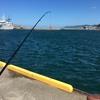 能生漁港で釣り & マリンドーム能生で海の幸を頂く!