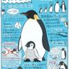 南の極み鳥類!コウテイペンギン