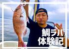船の上で鯛を釣る『タイラバ』に連れてってもらったら鯛釣れたしその後に釣った魚捌いてもらってちゃんと食べた