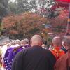須磨寺で七五三お参り