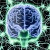 脳回路の溝を深める∞193