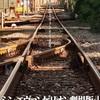 『シン・エヴァンゲリオン劇場版』西暦2021年1月23日公開!!!!!