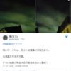 【地震雲】7月6日夕方~7日にかけて日本各地で『地震雲』の投稿が相次ぐ!5日夕方からM5半体感報告も!『環太平洋対角線の法則』の発動による『南海トラフ地震』などの巨大地震に要警戒!