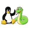 Mac x nfcpy x PaSoRi でNFCの情報を読み込む