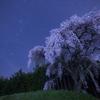 【天体写真】 桜と星空の星景写真