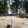 桜旺盛な高取山登頂(高取城跡下山)