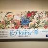 山種美術館『花*Flower*華-琳派から現代へー』