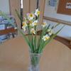 お花と御言葉