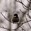 冬の布団の誘惑を断ち切るための対策を考える