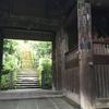鎌倉 苔巡り 杉本寺 報国寺