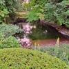 氷室跡の池(仮称)(石川県金沢)