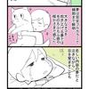 【HSP漫画】毎日夢を見るのは眠りが浅いせい?ちょっと疲れてちょっと楽しい