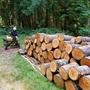 薪割りの日曜日