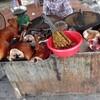 ゲテモノ好き必見!ベトナム・ハノイで犬肉料理を食べられる屋台通り!