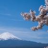 ニッポンのESGインデックスをリサーチ。ETF連動の基準はMSCIジャパンESGセレクト・リーダーズ指数とFTSE Blossom Japan Indexがあるよ!