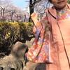 手作りのこどもウール着物、今年は先月のお花見が最後になりました。