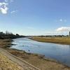 大落古利根川を歩く 古利根堰から春日部・牛島まで