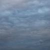 10月26日(土)雨 天体のハルモニア(ヒルデガルト・フォン・ビンゲン)