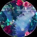 透明な薔薇