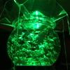 【ポケモンGO】カビゴン出た!!金沢21世紀美術館アートアクアリウム見に行ったら・・・【石川】