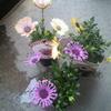 花で風水?