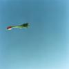 写真家はどうして食べ物を空に飛ばすのか