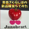 青森県産さくらんぼの新品種「ジュノハート」を食べてみた