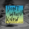 Maroon 5『Don't Wanna Know』
