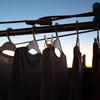 754  洗濯バサミ