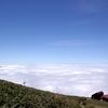 谷川岳の雲海