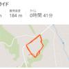 RUN 8km