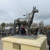 19/03/15 National Hunt Racing - Cheltenham Festival -