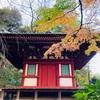 休業OLの紅葉通信【高輪の日本庭園】3つのホテルに囲まれた池泉回遊式庭園