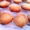 レシピブログモニター『おからも入ったバニラたっぷりサクサククッキー』