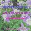 臨時休業のお知らせ(5/12~5/14は3連休となります)☆